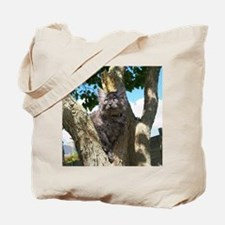 Fluffy Grey Kitten Tote Bag