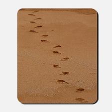 Sndy Feet Mousepad