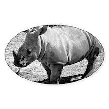 Rhino Day Decal