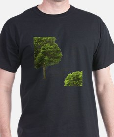 IF A MAN SAYS SOMETHING IN THE WOODS. T-Shirt