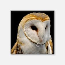 """Barney The Barn Owl Square Sticker 3"""" x 3"""""""