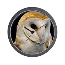 Barney The Barn Owl Wall Clock