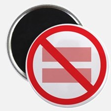 Marriage Equality - NOT ! Magnet
