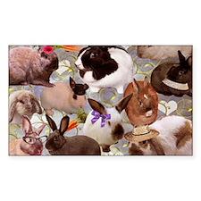 Happy Bunnies Decal