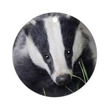 Cute Badger Round Ornament