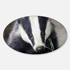 Cute Badger Decal