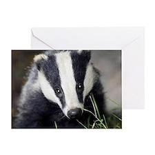 Cute Badger Greeting Card