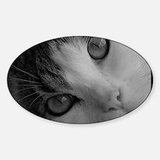 Leila Kitty in Black  White Sticker (Oval)