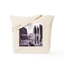 canyondchsq2 Tote Bag