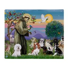 1 - 8x10-StFrancis-10dogs Throw Blanket