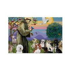 1 - 8x10-StFrancis-10dogs Rectangle Magnet