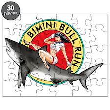 Bimini Bull Run Puzzle