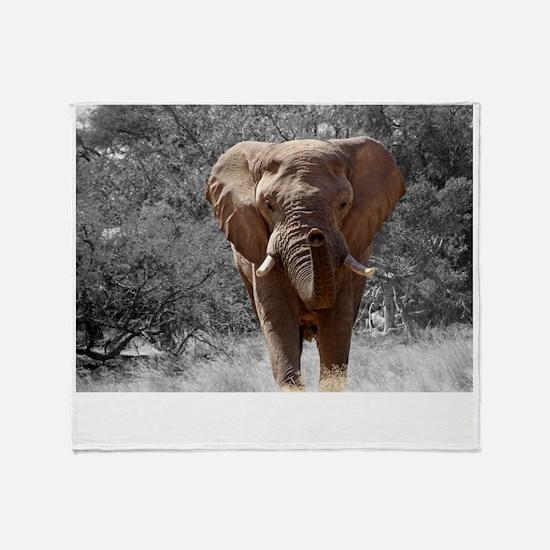 elephant-84186 Throw Blanket