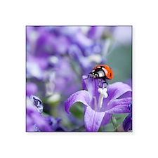 "Bellflowers Ladybug Square Sticker 3"" x 3"""