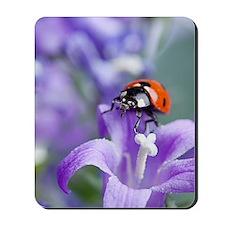 Flower Ladybug Mousepad