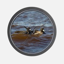 American Coots Wall Clock
