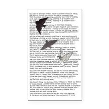 The Raven poem, Edgar Allan P Rectangle Car Magnet