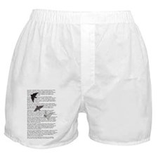 The Raven poem, Edgar Allan Poe poetr Boxer Shorts