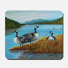 Canada Geese at Lake Lure Mousepad