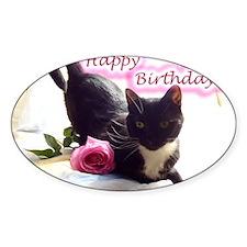 Happy Birthday Kitty Decal