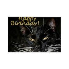 Stern Birthday Kitty Rectangle Magnet