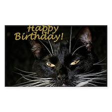 Stern Birthday Kitty Decal