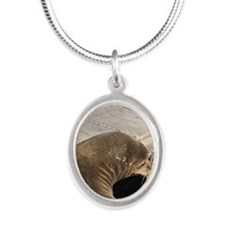 Sorrow Silver Oval Necklace