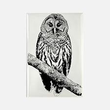 Mrs Barred Owl Rectangle Magnet