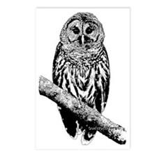 Mrs Barred Owl Postcards (Package of 8)