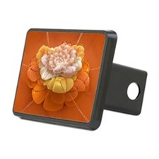 bd_greeting_card_192_H_F Hitch Cover