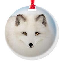 Cute Arctic Fox Ornament