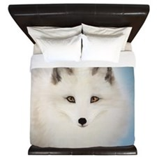 Arctic Fox with Blue Background King Duvet