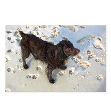 Scully with Pawprints Postcards (Package of 8)