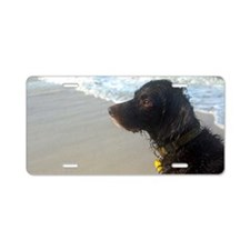 Scully Beach Profile Aluminum License Plate