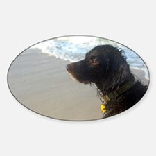 Scully Beach Profile Sticker (Oval)