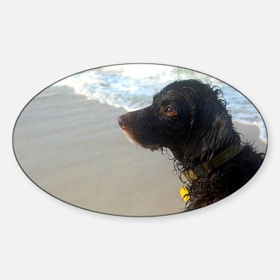 Scully Beach Profile Sticker (Oval)