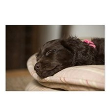 Pippi Sleeping Postcards (Package of 8)