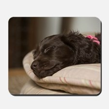 Pippi Sleeping Mousepad