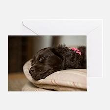 Pippi Sleeping Greeting Card