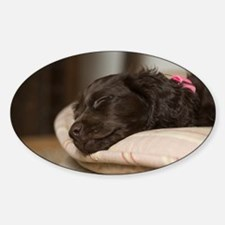 Pippi Sleeping Sticker (Oval)