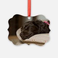 Pippi Sleeping Ornament