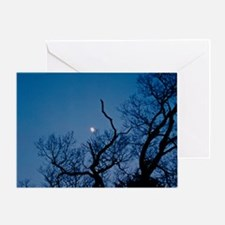 Catch the Moon Greeting Card