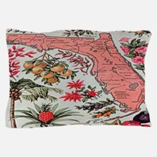 Vintage Florida Fruit Flower Map Pillow Case