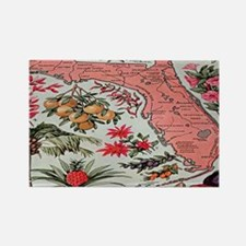 Vintage Florida Fruit Flower Map Rectangle Magnet