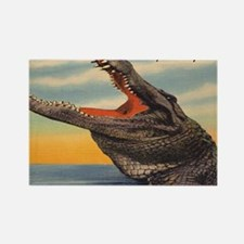 Vintage Alligator Postcard Rectangle Magnet