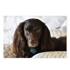 Halle in Bed Postcards (Package of 8)