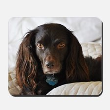 Halle in Bed Mousepad