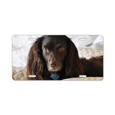 Halle in Bed Aluminum License Plate