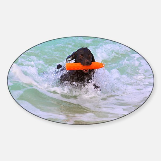 Halle Out of the Ocean Sticker (Oval)
