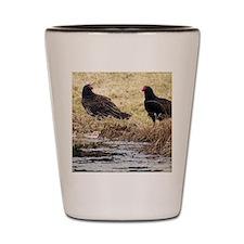 Turkey Vulture Shot Glass